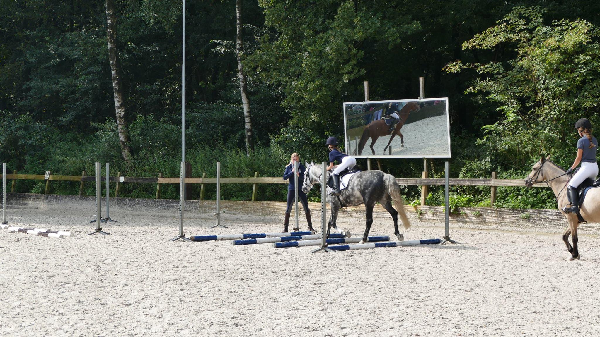 paarden clinic voor kinderen